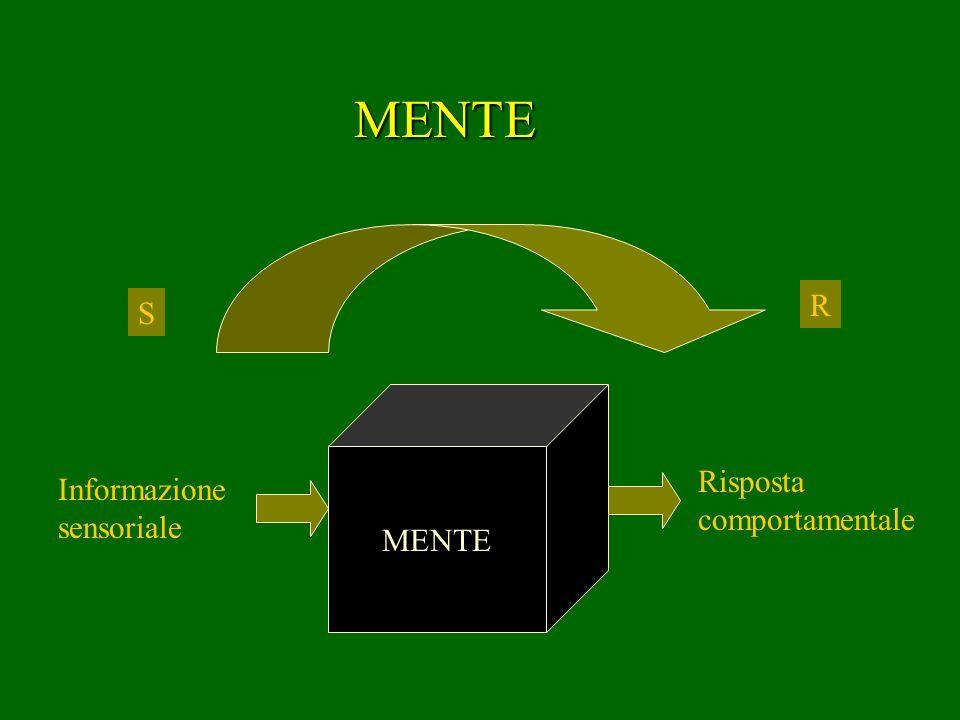 Informazione sensoriale Risposta comportamentale MENTE MENTE R S