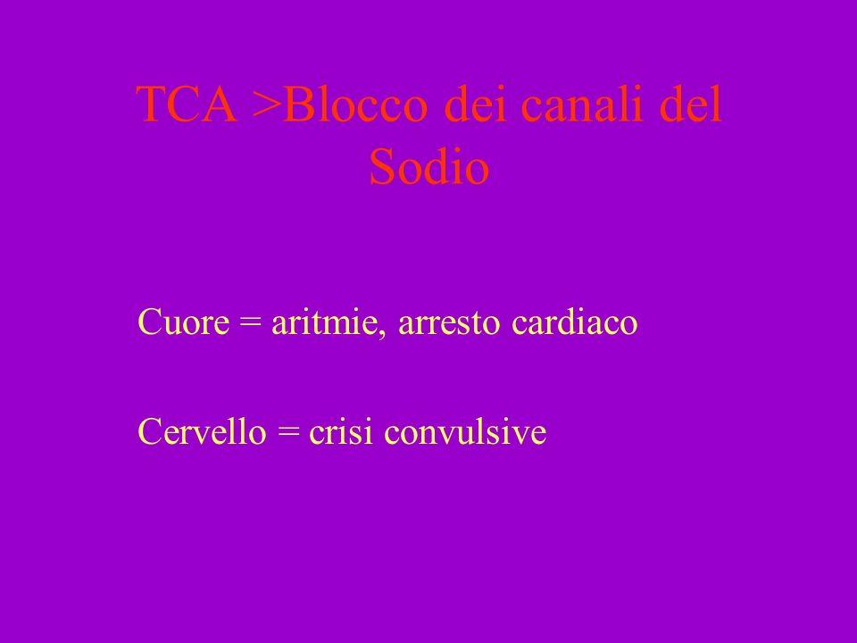 TCA >Blocco dei canali del Sodio Cuore = aritmie, arresto cardiaco Cervello = crisi convulsive