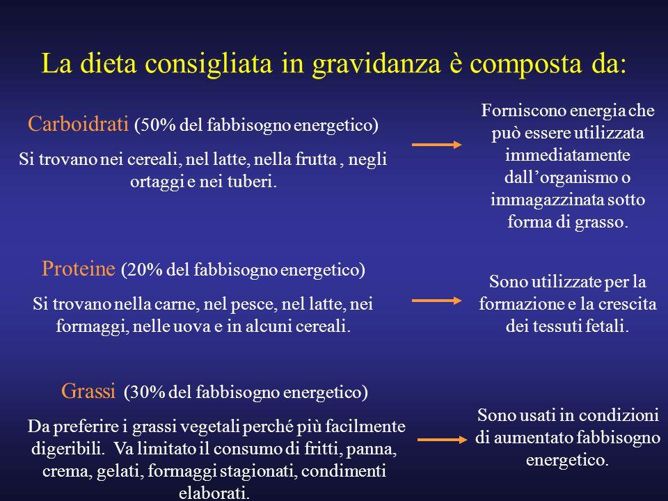 La dieta consigliata in gravidanza è composta da: Carboidrati (50% del fabbisogno energetico) Si trovano nei cereali, nel latte, nella frutta, negli o