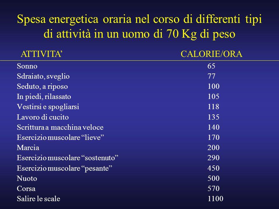 Spesa energetica oraria nel corso di differenti tipi di attività in un uomo di 70 Kg di peso Sonno Sdraiato, sveglio Seduto, a riposo In piedi, rilass