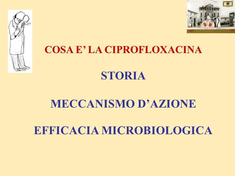AnnoMolecolaPrincipale attività microbiologica I° generazione chinolonici 1962Acido nalidixicoGram negativi II° generazione fluoro-chinolonici 1985Pefloxacina, NorfloxacinaGram negativi 1986OfloxacinaGram positivi 1987Ciprofloxacina(ad es SP, HI, SA met sens.) Micobatteri Pseudomonas aer ( Cipro) III-IV° generazione fluoro-chinolonici 1994Sparfloxacina Gram negativi 1998Levofloxacina, Trovafloxac.