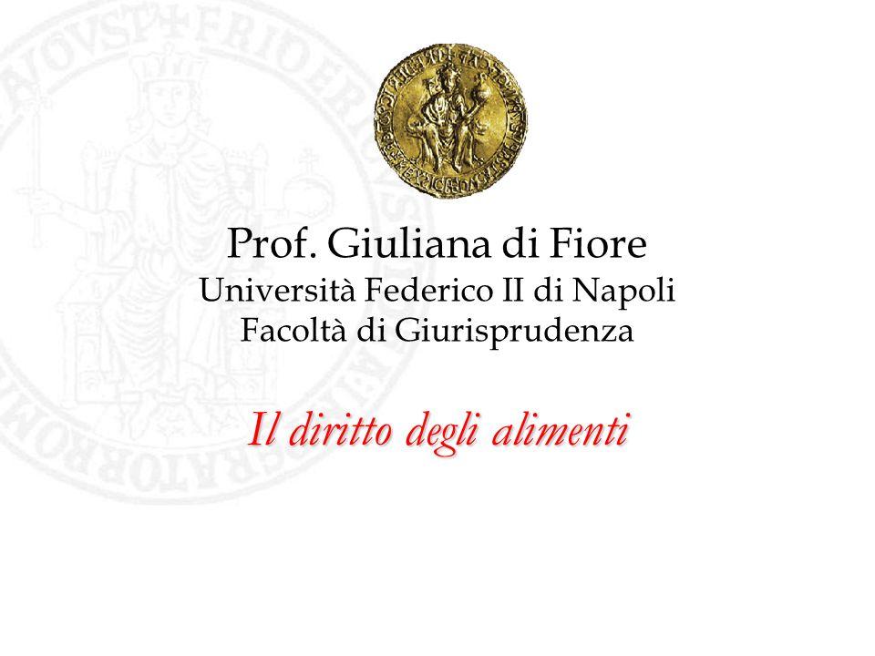 Il diritto degli alimenti Prof. Giuliana di Fiore Università Federico II di Napoli Facoltà di Giurisprudenza