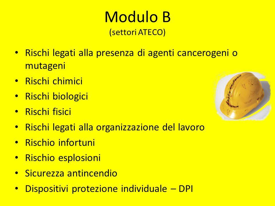 Modulo B (settori ATECO) Rischi legati alla presenza di agenti cancerogeni o mutageni Rischi chimici Rischi biologici Rischi fisici Rischi legati alla