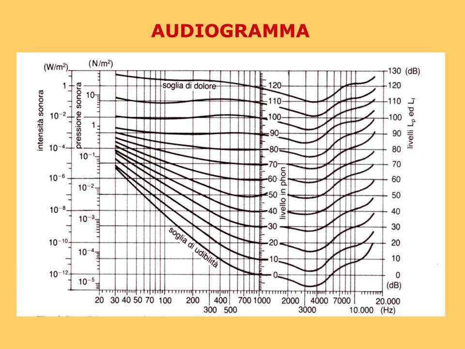 Misura del suono Unità di misura 1 Pa = 1 N/m 2 Range udibile: 20 µPa – 200 Pa LIVELLO DI PRESSIONE SONORA
