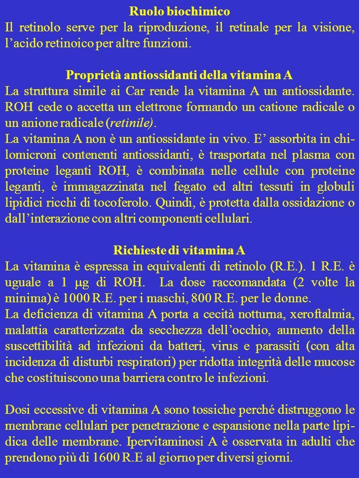 Ruolo biochimico Il retinolo serve per la riproduzione, il retinale per la visione, lacido retinoico per altre funzioni. Proprietà antiossidanti della