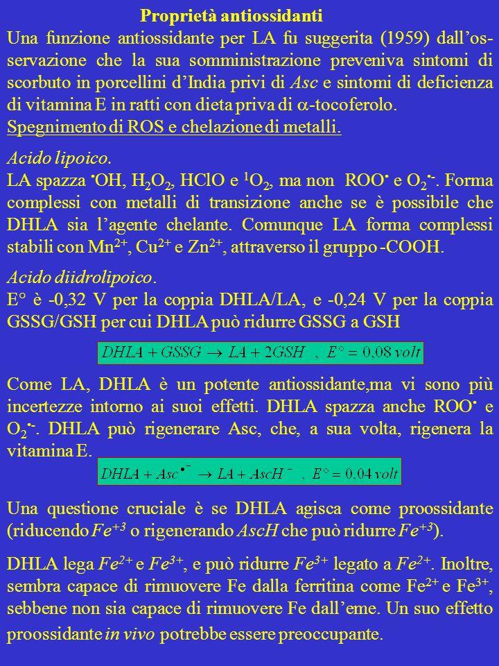 Proprietà antiossidanti Una funzione antiossidante per LA fu suggerita (1959) dallos- servazione che la sua somministrazione preveniva sintomi di scor