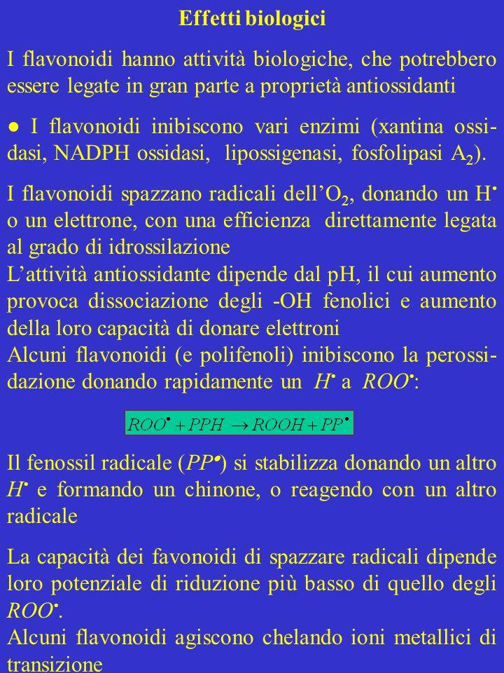 Effetti biologici I flavonoidi hanno attività biologiche, che potrebbero essere legate in gran parte a proprietà antiossidanti I flavonoidi inibiscono