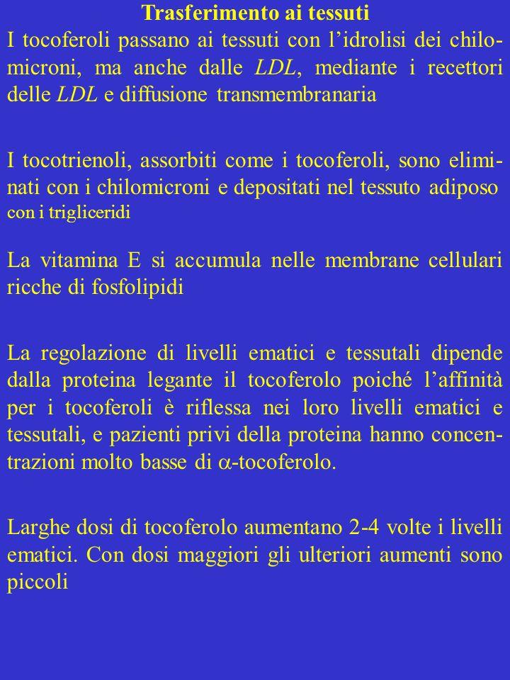 Livelli ematici e tessutali I livelli ematici (1,06 mg/dl) raddoppiano con integrazione di 800 IU (800 mg di acetato di tocoferolo) per 8 settimane Linfusione di -tocoferolo, evita assorbimento e trasporto normali, ed aumenta 10 volte il livello ematico, che, in 24 ore, ritorna al valore basale Plasma e tessuti umani contengono 2-3 volte più - che -tocoferolo, anche se la dieta contiene più - tocoferolo Il livelli di tocotrienoli sono bassi anche se essi sono consumati quanto l -tocoferolo.