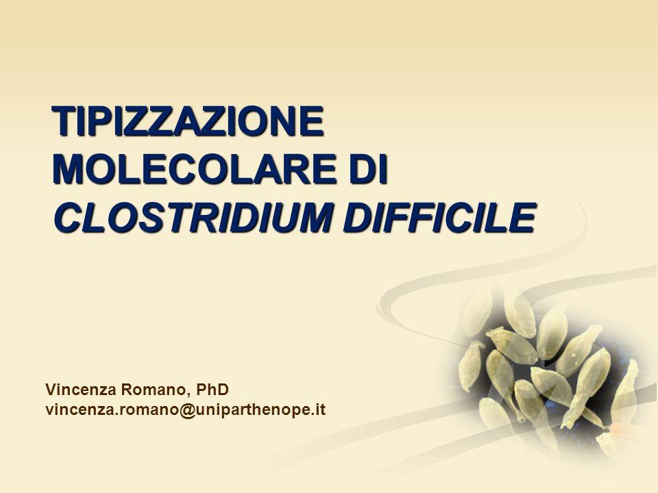 TIPIZZAZIONE MOLECOLARE DI CLOSTRIDIUM DIFFICILE Vincenza Romano, PhD vincenza.romano@uniparthenope.it