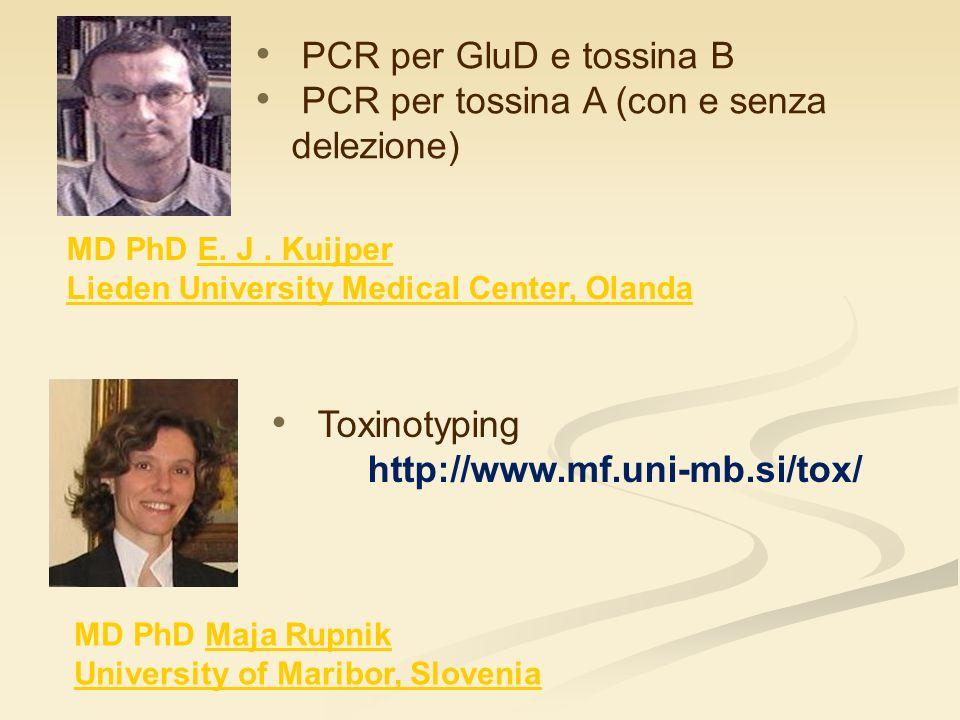 MD PhD E. J. Kuijper Lieden University Medical Center, Olanda PCR per GluD e tossina B PCR per tossina A (con e senza delezione) MD PhD Maja Rupnik Un