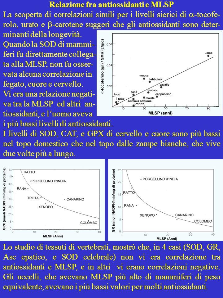 Relazione fra antiossidanti e MLSP La scoperta di correlazioni simili per i livelli sierici di -tocofe- rolo, urato e -carotene suggerì che gli antios
