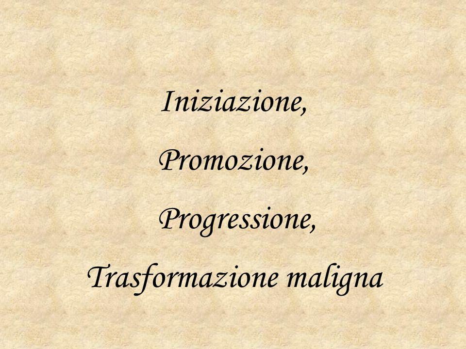 Iniziazione, Promozione, Progressione, Trasformazione maligna