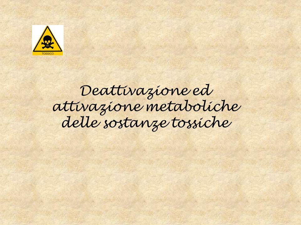 Deattivazione ed attivazione metaboliche delle sostanze tossiche