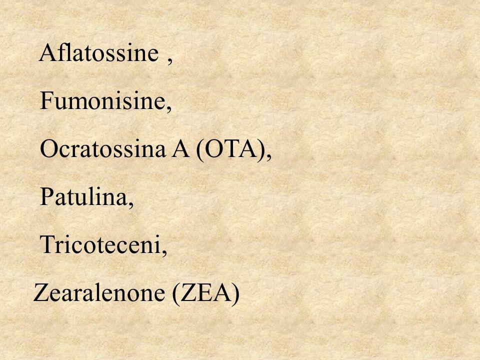 Aflatossine, Fumonisine, Ocratossina A (OTA), Patulina, Tricoteceni, Zearalenone (ZEA)