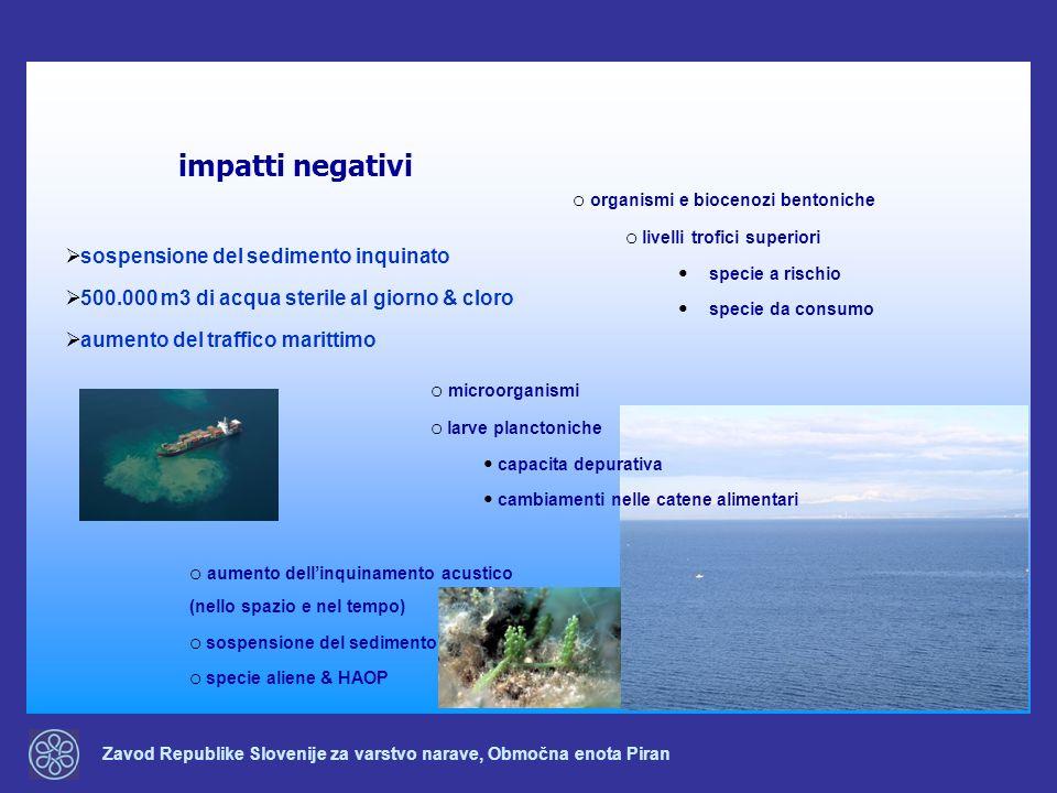 Zavod Republike Slovenije za varstvo narave, Območna enota Piran impatti negativi sospensione del sedimento inquinato 500.000 m3 di acqua sterile al g