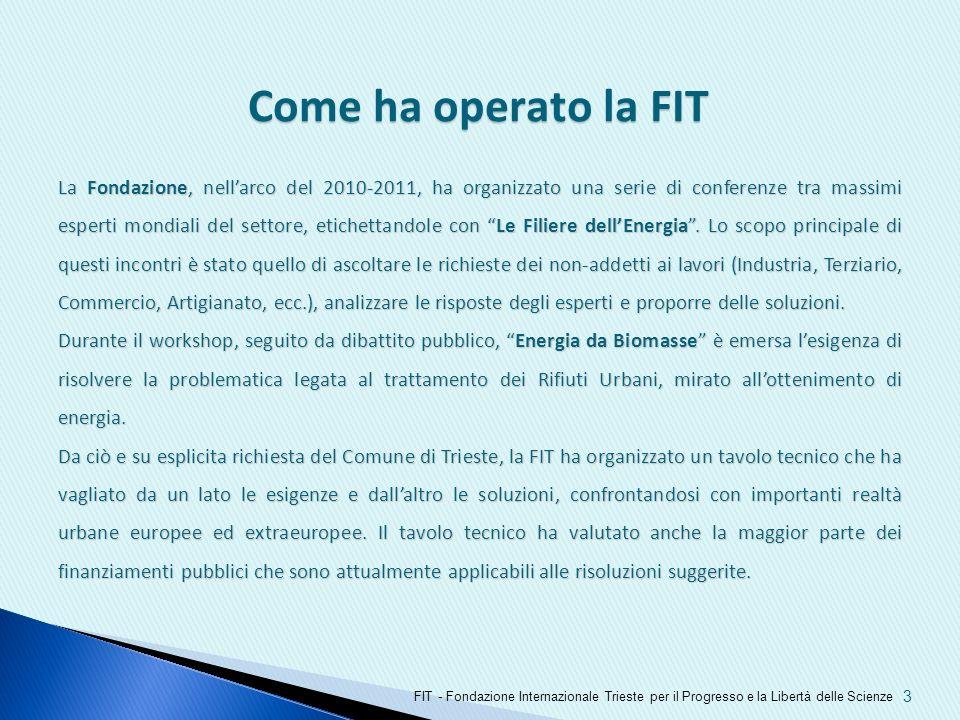 3 Come ha operato la FIT FIT - Fondazione Internazionale Trieste per il Progresso e la Libertà delle Scienze La Fondazione, nellarco del 2010-2011, ha