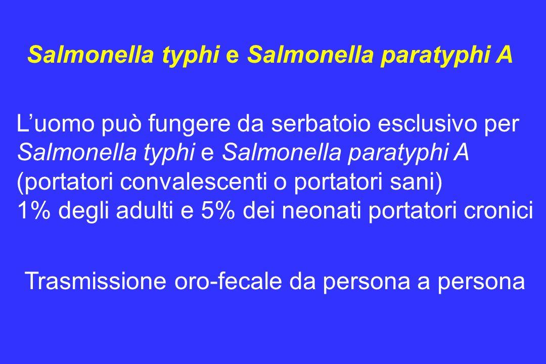 Luomo può fungere da serbatoio esclusivo per Salmonella typhi e Salmonella paratyphi A (portatori convalescenti o portatori sani) 1% degli adulti e 5%