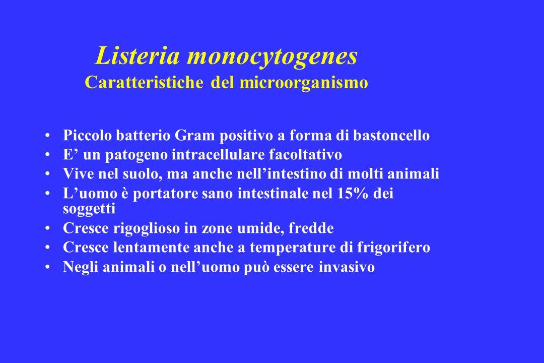 Listeria monocytogenes Caratteristiche del microorganismo Piccolo batterio Gram positivo a forma di bastoncello E un patogeno intracellulare facoltati