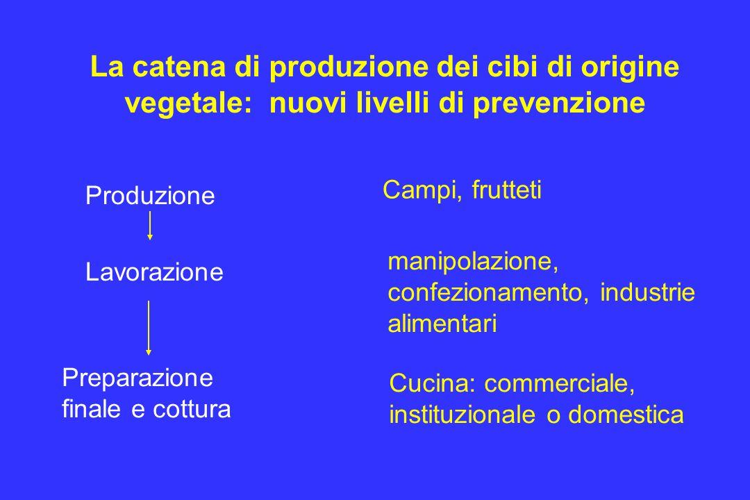 La catena di produzione dei cibi di origine vegetale: nuovi livelli di prevenzione Produzione Lavorazione Preparazione finale e cottura Campi, fruttet