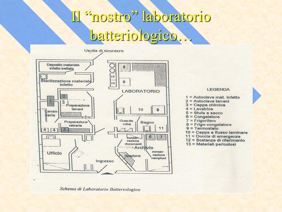 Il nostro laboratorio batteriologico…
