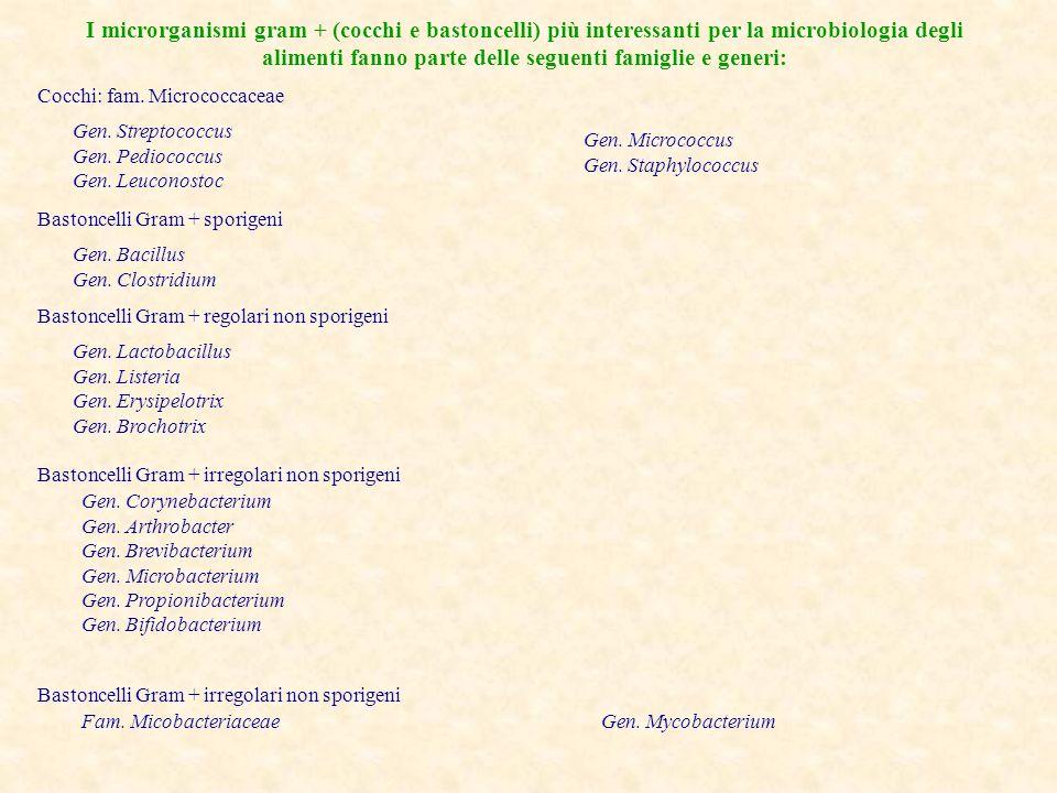 I microrganismi gram + (cocchi e bastoncelli) più interessanti per la microbiologia degli alimenti fanno parte delle seguenti famiglie e generi: Cocch