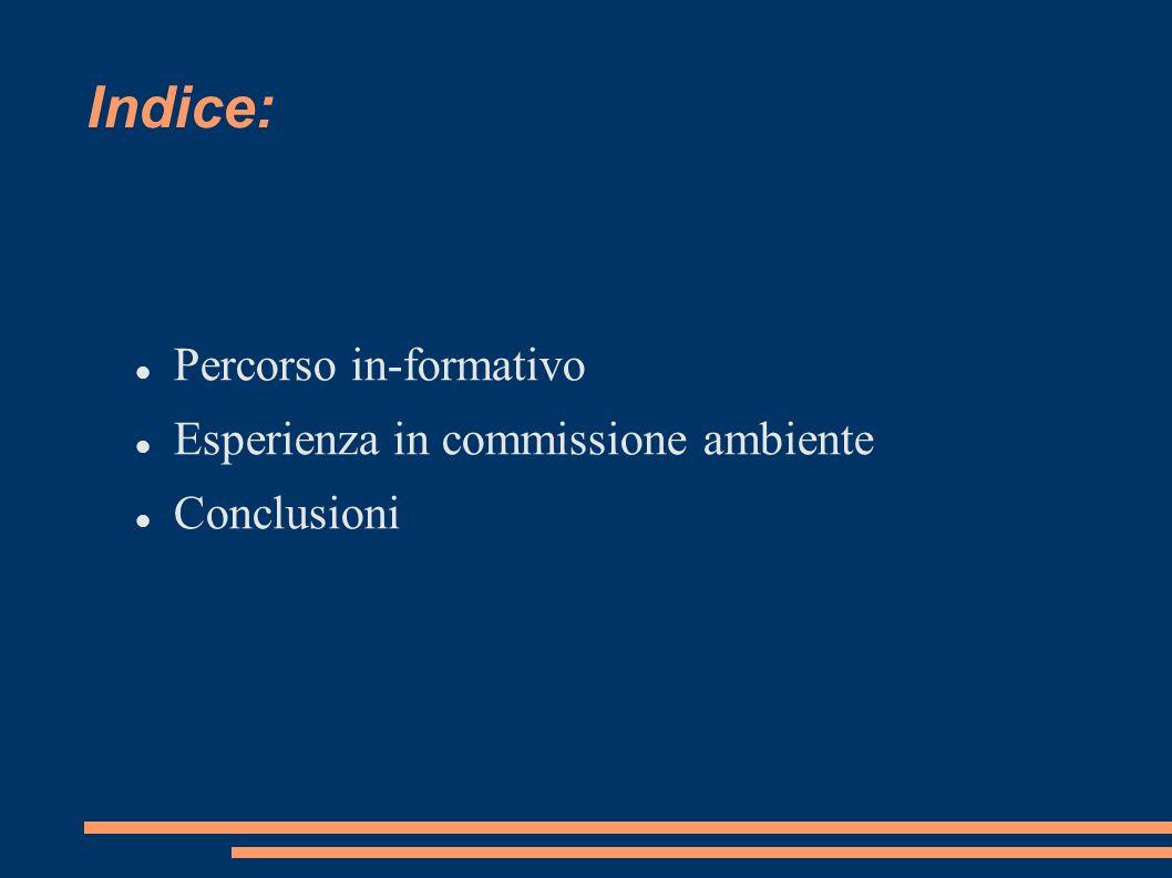 Indice: Percorso in-formativo Esperienza in commissione ambiente Conclusioni