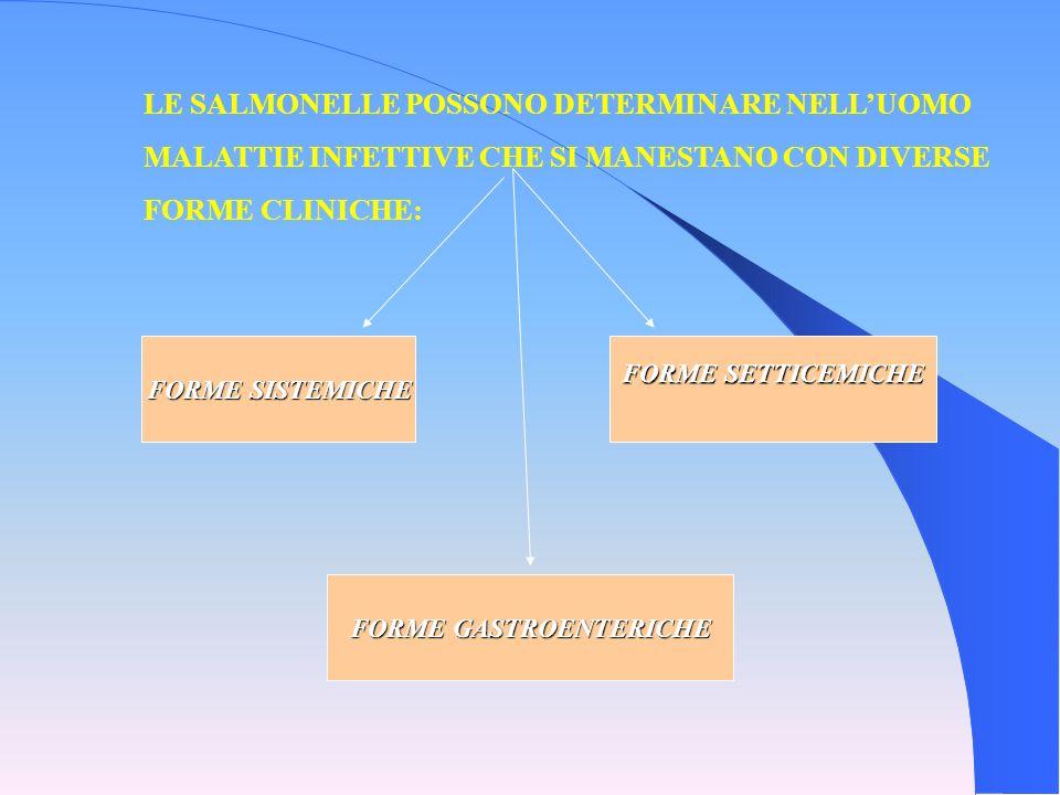 LE SALMONELLE POSSONO DETERMINARE NELLUOMO MALATTIE INFETTIVE CHE SI MANESTANO CON DIVERSE FORME CLINICHE: FORME SISTEMICHE FORME SETTICEMICHE FORME G