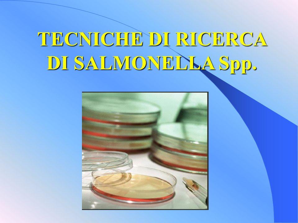 TECNICHE DI RICERCA DI SALMONELLA Spp.