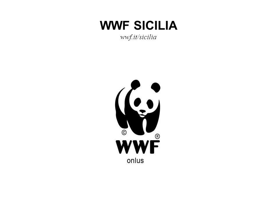 WWF SICILIA wwf.it/sicilia