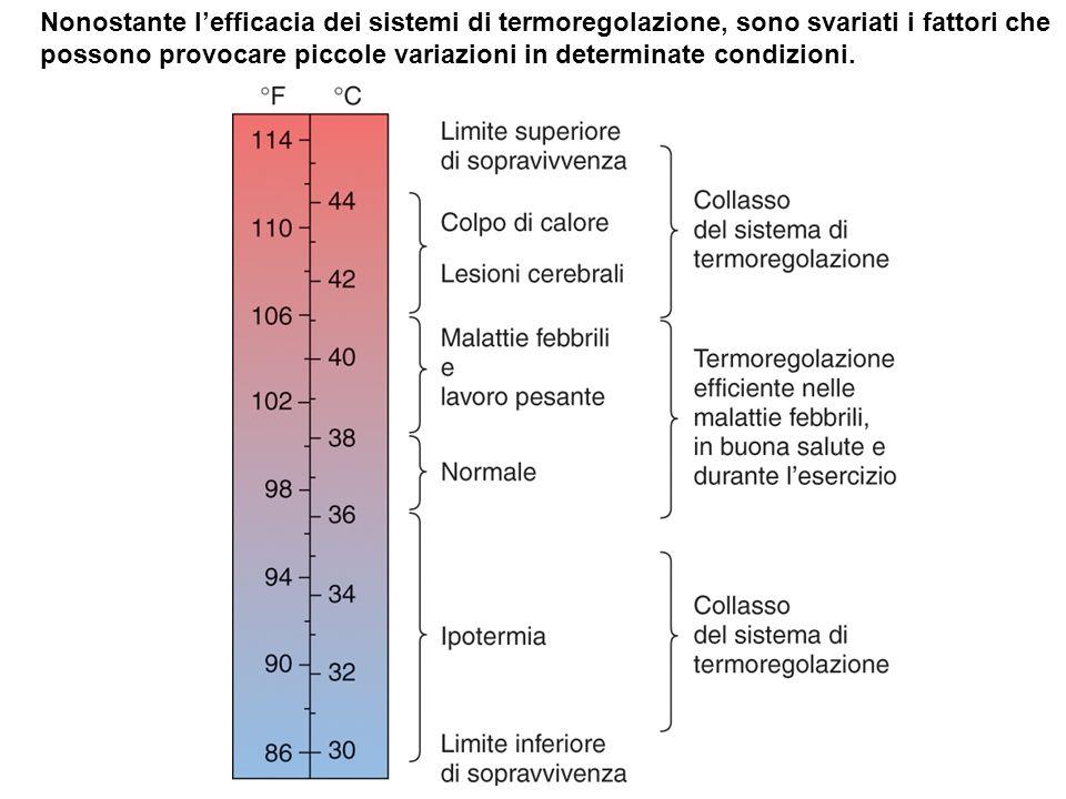 Nonostante lefficacia dei sistemi di termoregolazione, sono svariati i fattori che possono provocare piccole variazioni in determinate condizioni.