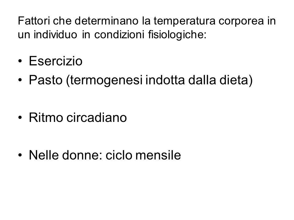 Fattori che determinano la temperatura corporea in un individuo in condizioni fisiologiche: Esercizio Pasto (termogenesi indotta dalla dieta) Ritmo ci