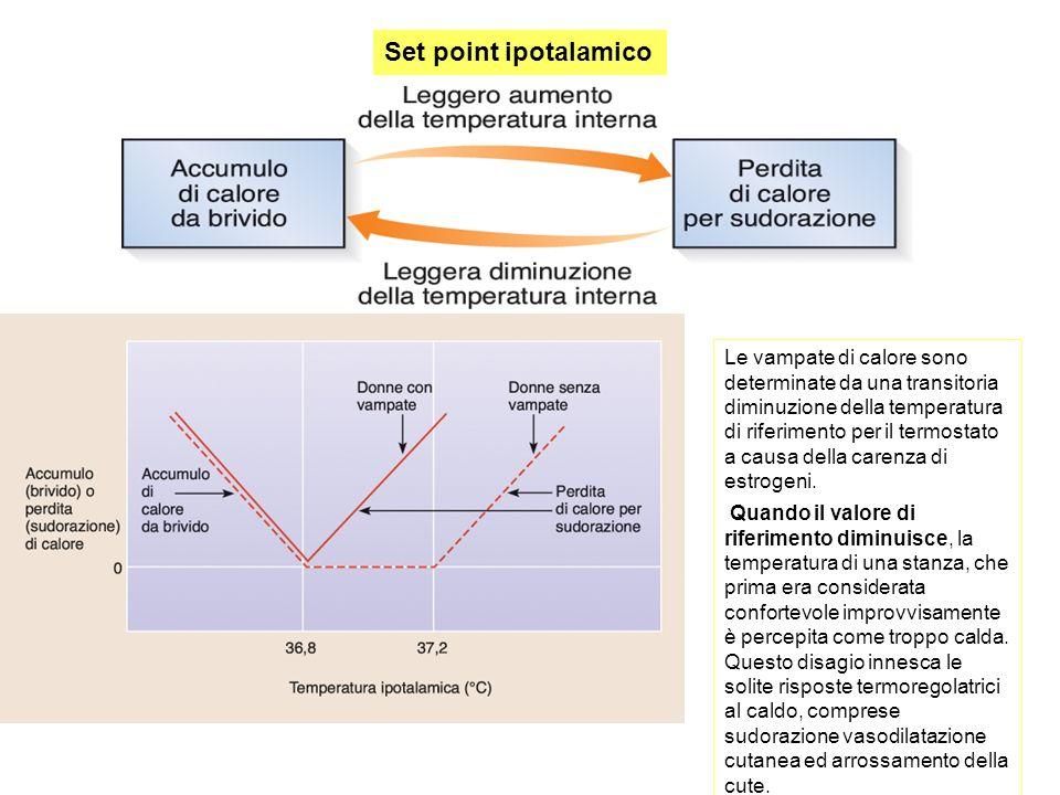 Set point ipotalamico Le vampate di calore sono determinate da una transitoria diminuzione della temperatura di riferimento per il termostato a causa