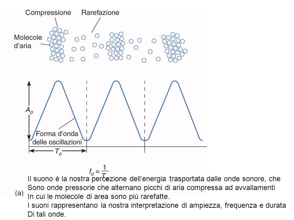 Il suono è la nostra percezione dellenergia trasportata dalle onde sonore, che Sono onde pressorie che alternano picchi di aria compressa ad avvallame