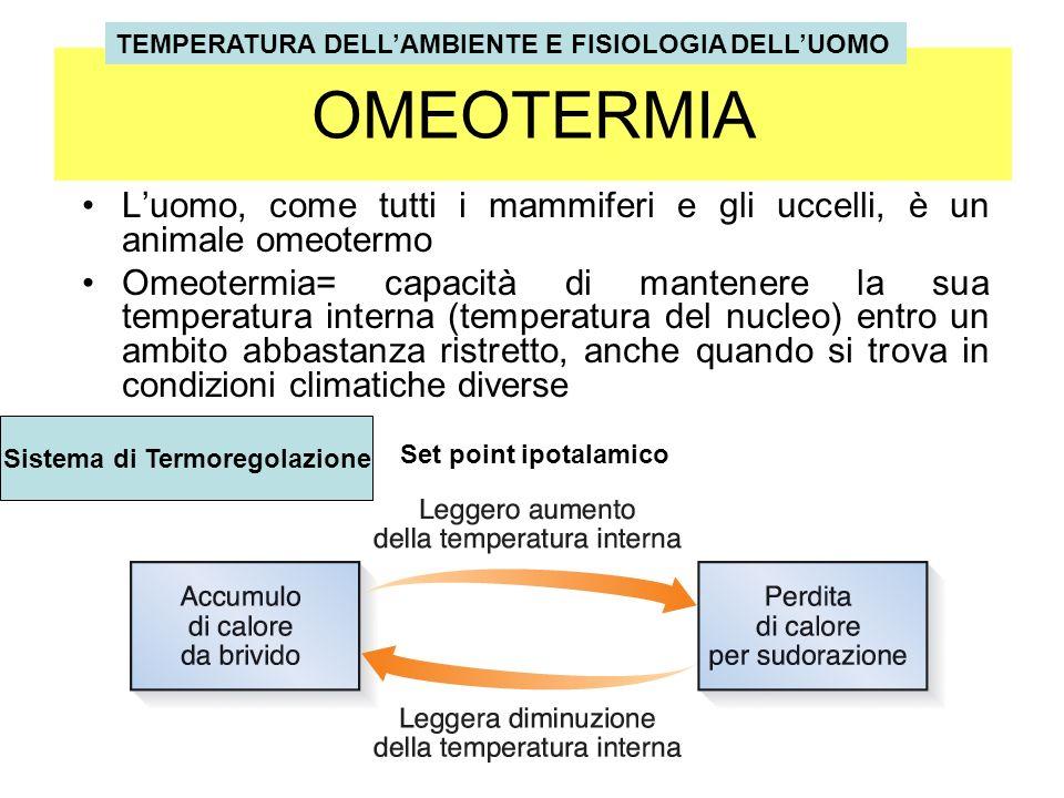 Benessere termico È rappresentato da quelle condizioni in cui lorganismo riesce a mantenere lequilibrio termico (omeotermia) senza lintervento del sistema di termoregolazione propria