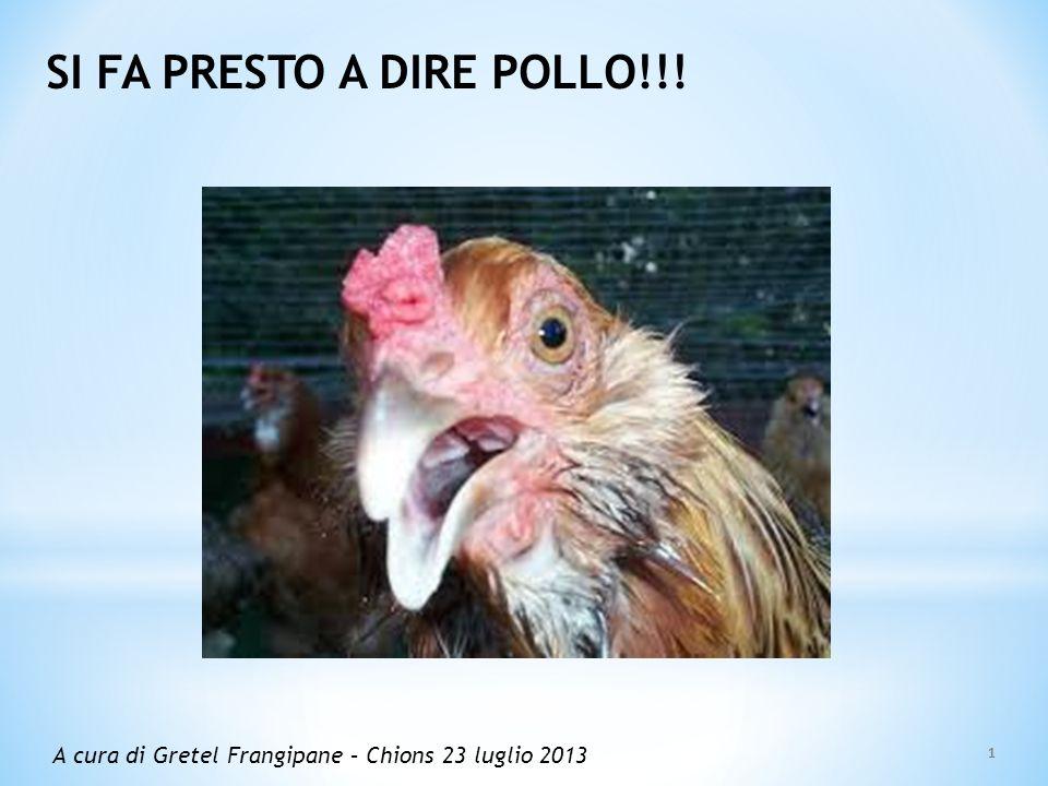 SI FA PRESTO A DIRE POLLO!!! A cura di Gretel Frangipane – Chions 23 luglio 2013 1