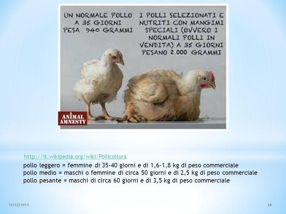 pollo leggero = femmine di 35-40 giorni e di 1,6-1,8 kg di peso commerciale pollo medio = maschi o femmine di circa 50 giorni e di 2,5 kg di peso comm
