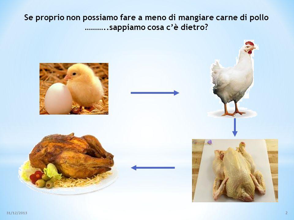 Modalità di allevamento polli 1. Silvo-pastorale o Autoproduzione domestica 31/12/2013 3