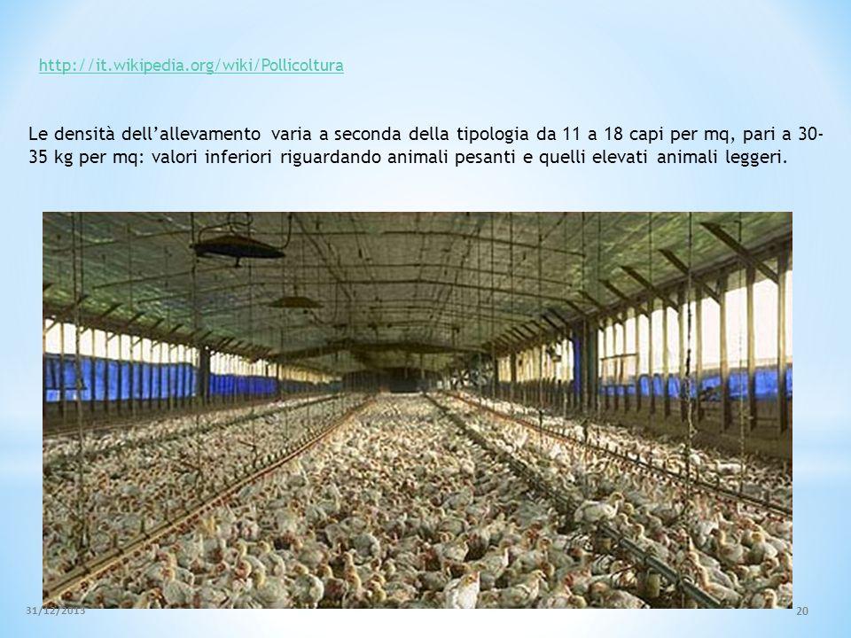 Le densità dellallevamento varia a seconda della tipologia da 11 a 18 capi per mq, pari a 30- 35 kg per mq: valori inferiori riguardando animali pesan