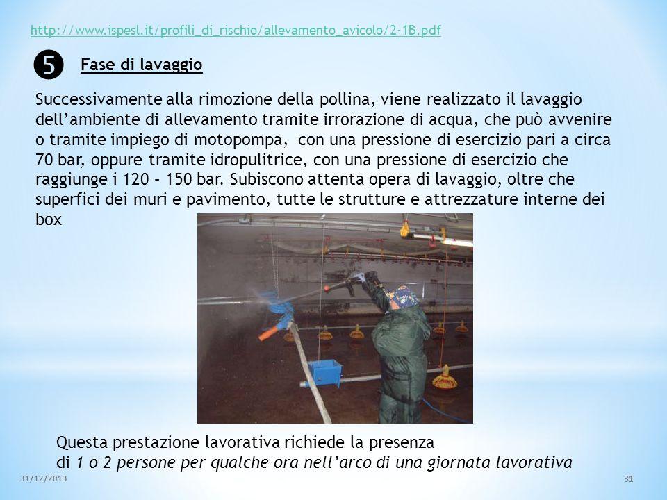 http://www.ispesl.it/profili_di_rischio/allevamento_avicolo/2-1B.pdf Successivamente alla rimozione della pollina, viene realizzato il lavaggio dellam