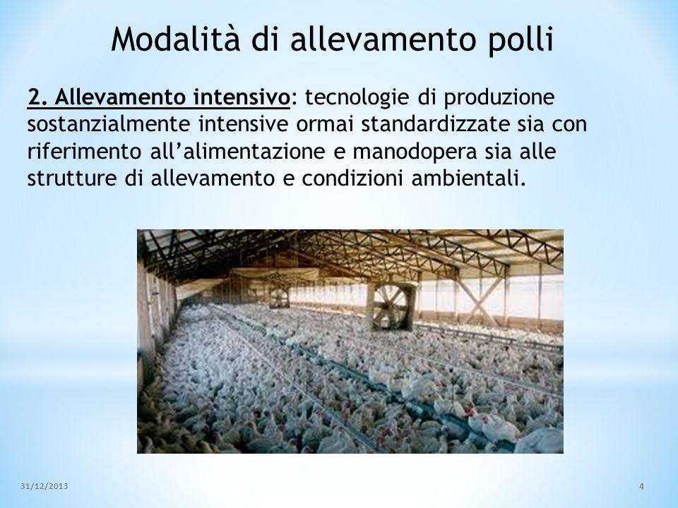 Modalità di allevamento polli 2. Allevamento intensivo: tecnologie di produzione sostanzialmente intensive ormai standardizzate sia con riferimento al