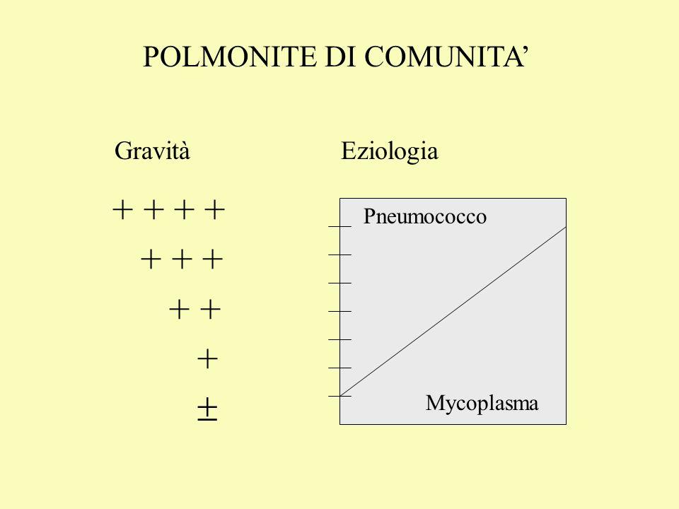 POLMONITE DI COMUNITA Pneumococco Mycoplasma Eziologia + + + + + + + + + + Gravità