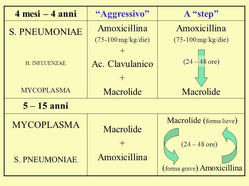 Macrolide ( forma lieve ) ( forma grave ) Amoxicillina 4 mesi – 4 anniAggressivoA step S. PNEUMONIAE H. INFLUENZAE MYCOPLASMA Amoxicillina (75-100 mg/