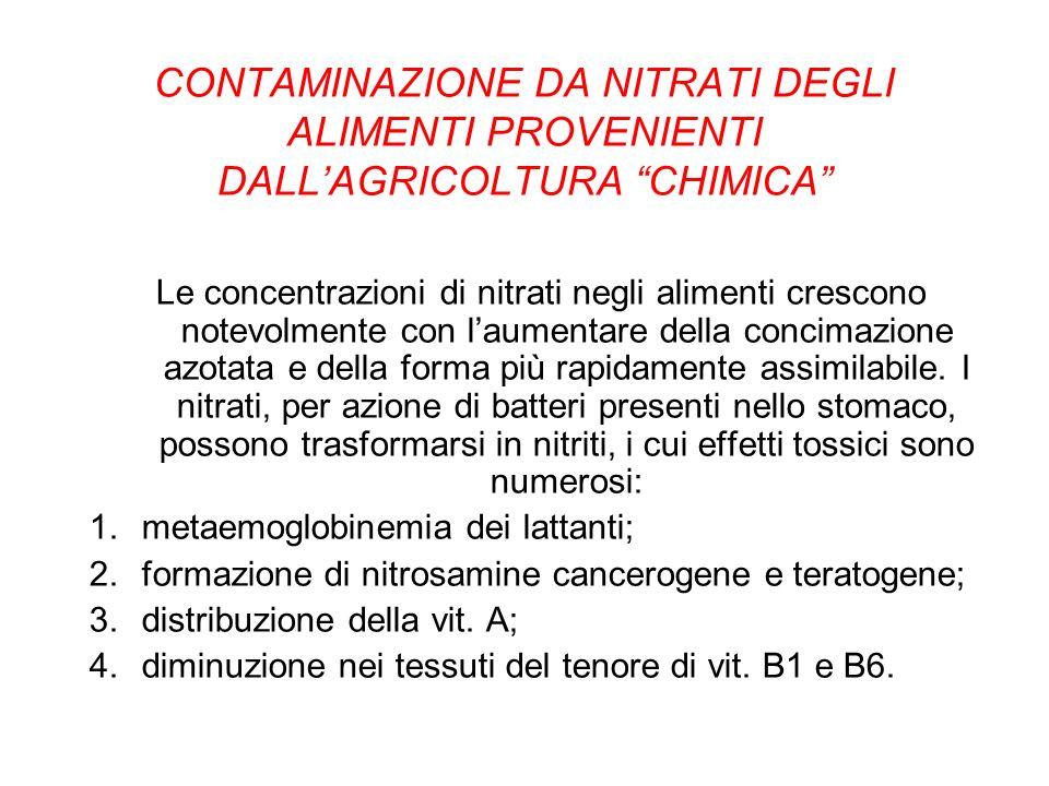 CONTAMINAZIONE DA NITRATI DEGLI ALIMENTI PROVENIENTI DALLAGRICOLTURA CHIMICA Le concentrazioni di nitrati negli alimenti crescono notevolmente con lau