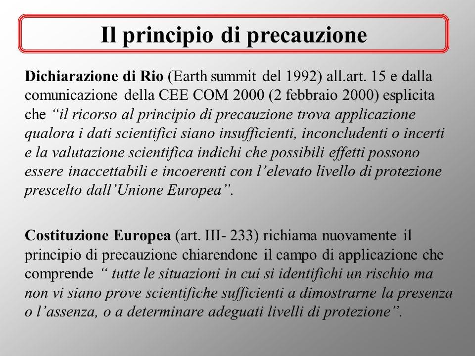 Dichiarazione di Rio (Earth summit del 1992) all.art. 15 e dalla comunicazione della CEE COM 2000 (2 febbraio 2000) esplicita che il ricorso al princi