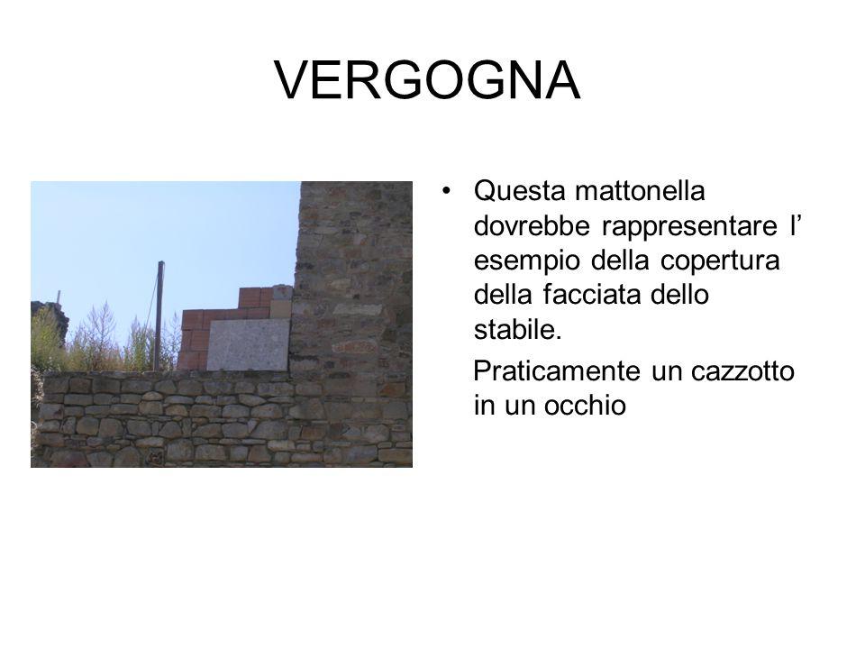 Questa mattonella dovrebbe rappresentare l esempio della copertura della facciata dello stabile. Praticamente un cazzotto in un occhio