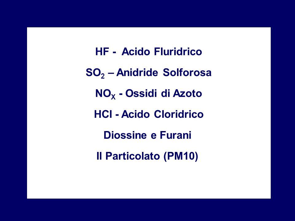 HF - Acido Fluridrico SO 2 – Anidride Solforosa NO X - Ossidi di Azoto HCl - Acido Cloridrico Diossine e Furani Il Particolato (PM10)