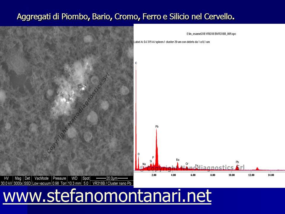 Aggregati di Piombo, Bario, Cromo, Ferro e Silicio nel Cervello. www.stefanomontanari.net