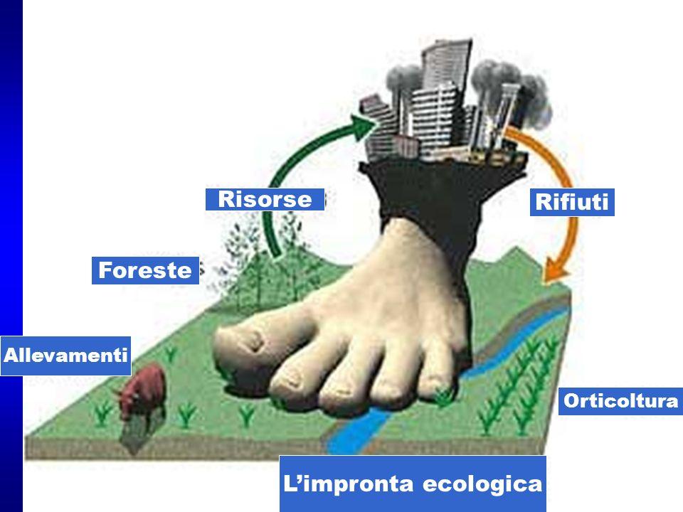 Limpronta ecologica Risorse Rifiuti Foreste Allevamenti Orticoltura
