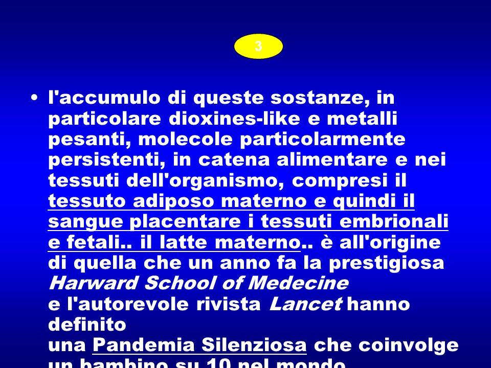 l'accumulo di queste sostanze, in particolare dioxines-like e metalli pesanti, molecole particolarmente persistenti, in catena alimentare e nei tessut