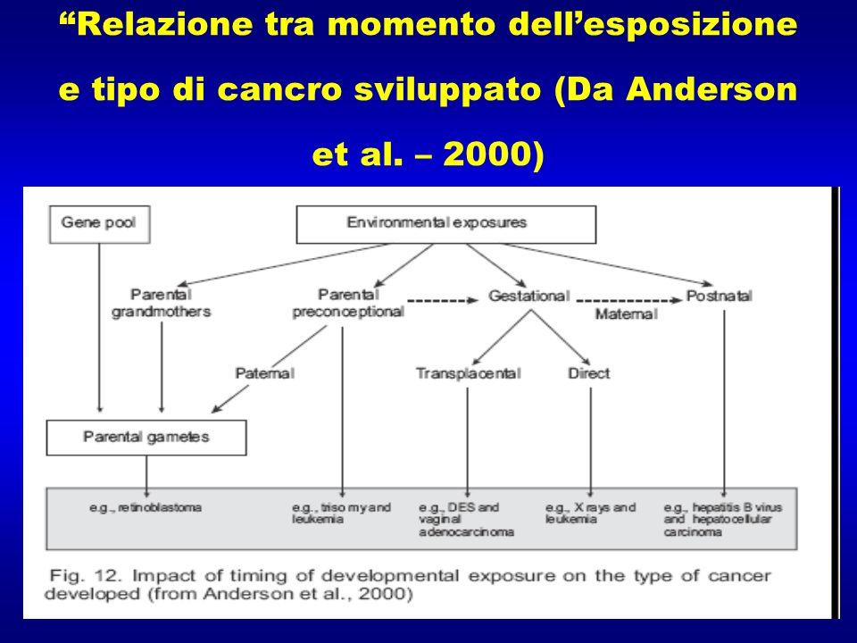Relazione tra momento dellesposizione e tipo di cancro sviluppato (Da Anderson et al. – 2000)